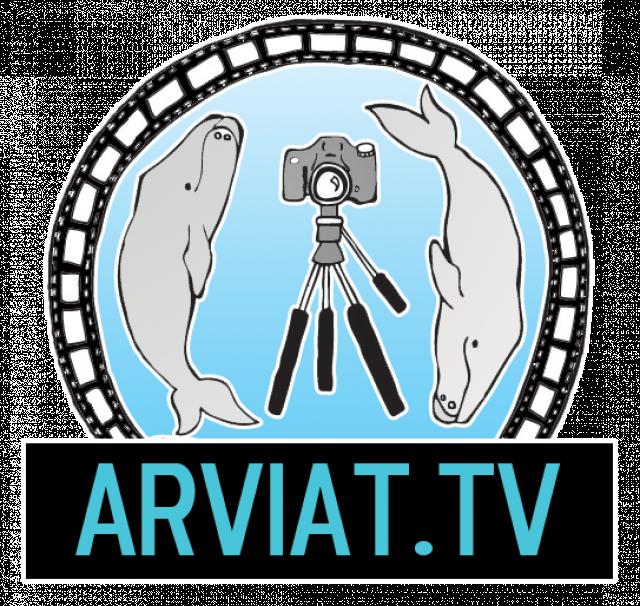 Portrait de ARVIATTV