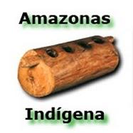 Amazonas Indigena's picture