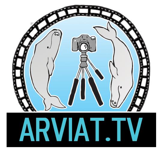 ARVIATTV's picture